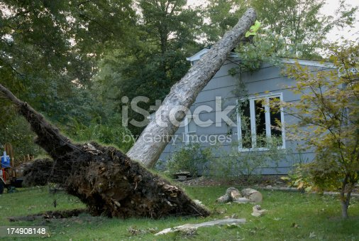Scene of devastation after a tornado ripped through a neighborhood. Here a large tree is shown uprooted by the force of the wind and leaning on the roof of a house. This tornado hit a Severna Park neighborhood in Maryland USA. Image perfect for insurance brochure.