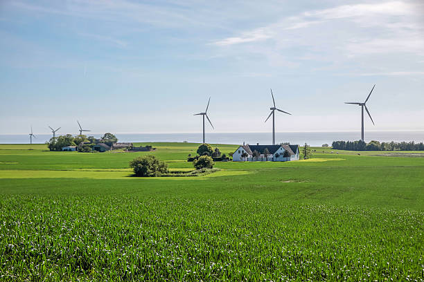 Wind farm und grünen Rasen auf Bornholm – Foto