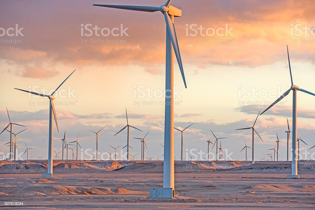 Wind farm at sunset moment, Egypt stock photo