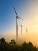 Wind farm in Navarre (Spain) at sunset.