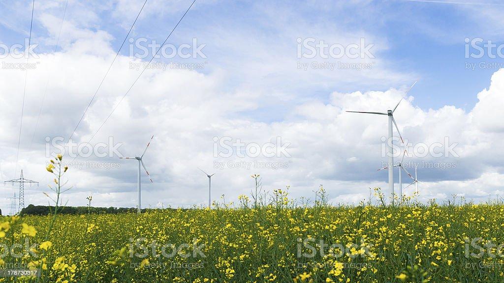 Wind Farm Onshore royalty-free stock photo