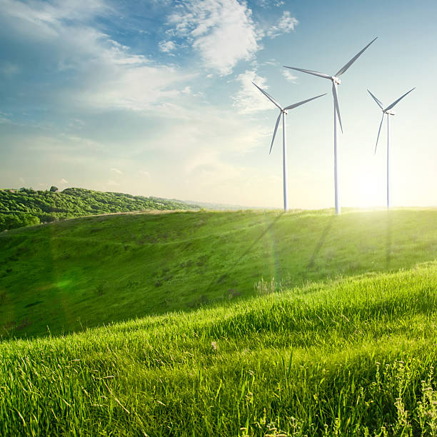 Wind generator turbine on summer landscape Wind generator turbines on summer landscape sustainable energy stock pictures, royalty-free photos & images