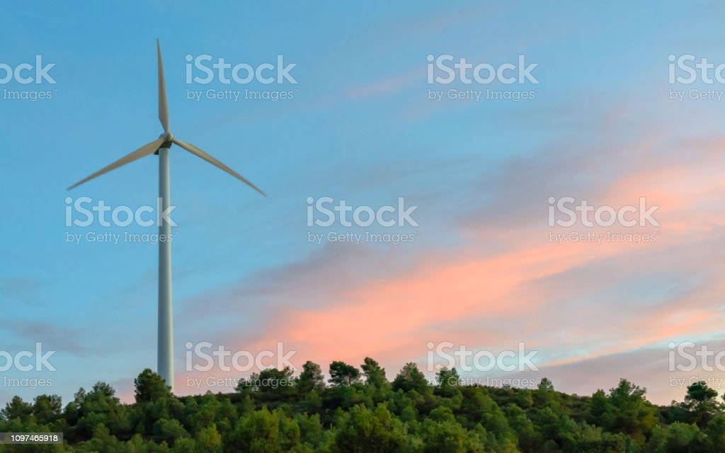 Wind plant at sunset for the generation of electrical energy