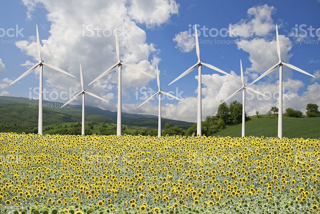 Wind power plant and sunflower field royalty-free stock photo