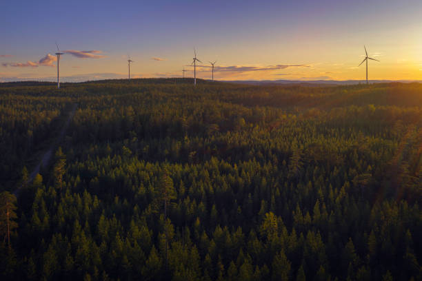 Wind power stations in a forest landscape stock photo