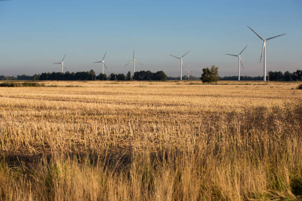 wind power stations in gdansk, poland - poland foto e immagini stock