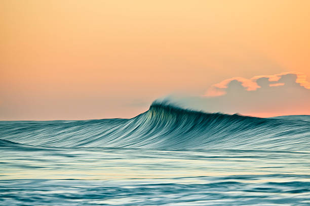 wind swept breaking wave in the golden light of sunrise. - wave stock photos and pictures