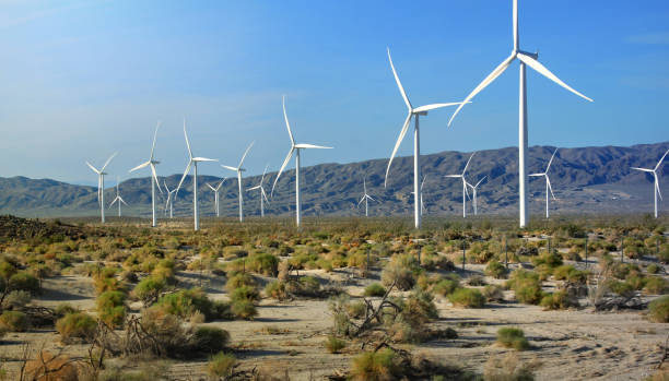 Wind turbine farm and array stock photo