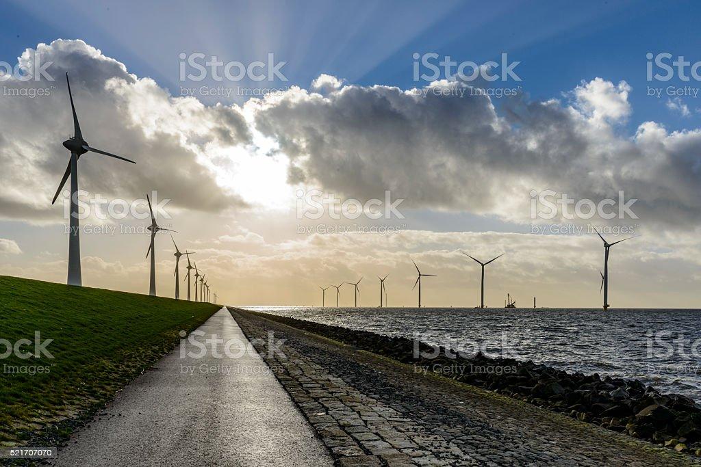 Wind turbine farm on the coast stock photo