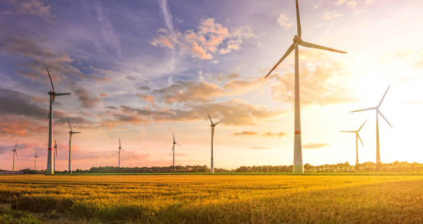 wind turbine field wind turbine field windmill stock pictures, royalty-free photos & images