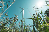 A wind turbine for power generation is standing in the middle of a field of a farm. Show with a low angle view and selective focus.