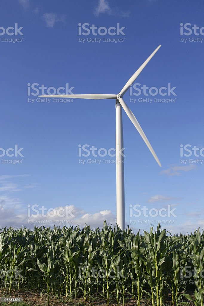 Wind turbine in a field royalty-free stock photo