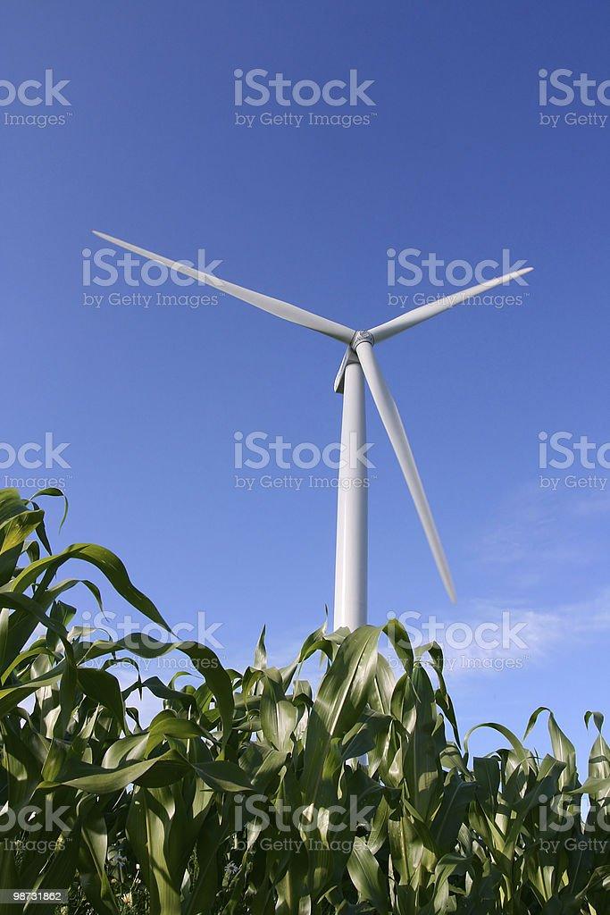 Wind turbine in a field royalty-free stock photo