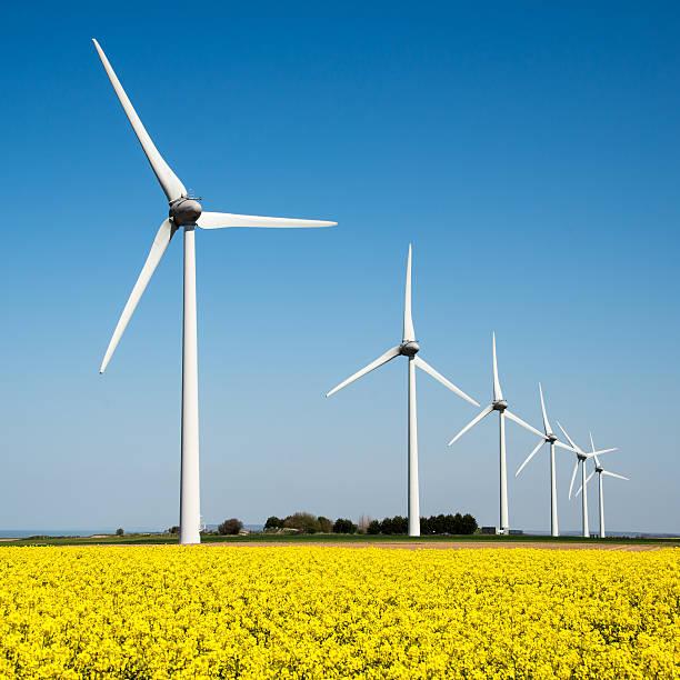 Windkraftanlage in eine gelbe Blume Feld von rapeseed – Foto