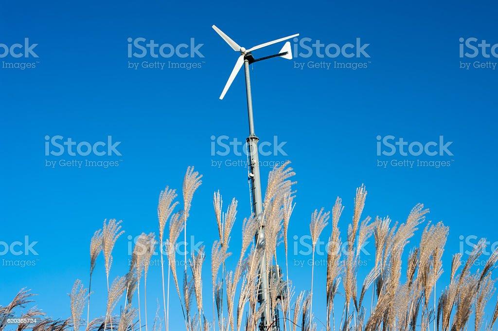 Wind Turbine in Sky park, South Korea. zbiór zdjęć royalty-free