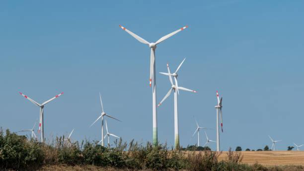 Windpark in einem Maisfeld – Foto