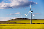 Wind turbine power generation in canola field near Pincher Creek, Alberta, Canada.