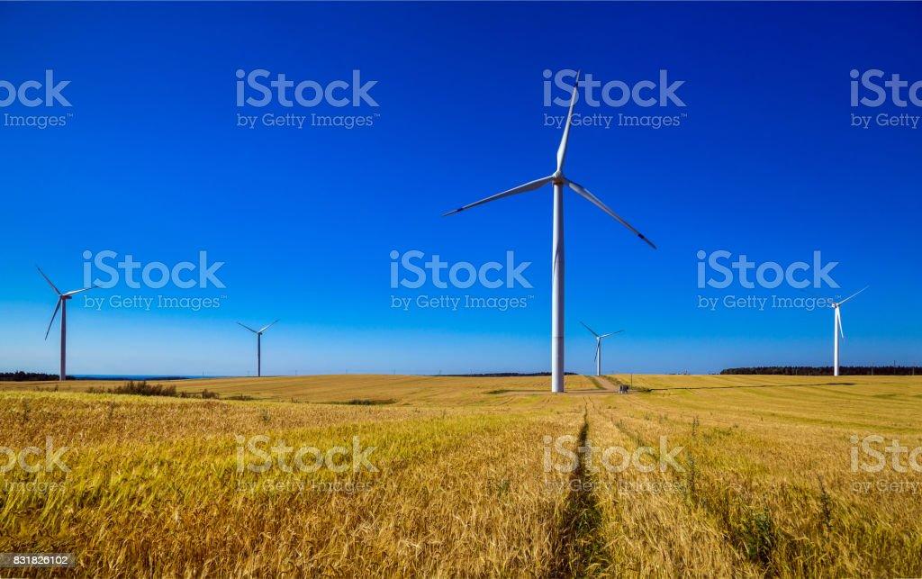 Eolienne, production d'électricité - Photo