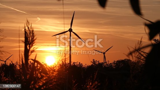 Wind turbines at sunset surrounded by grasses - wind energy, alternative energies, natural resources, climate change, silhouette, sustainable