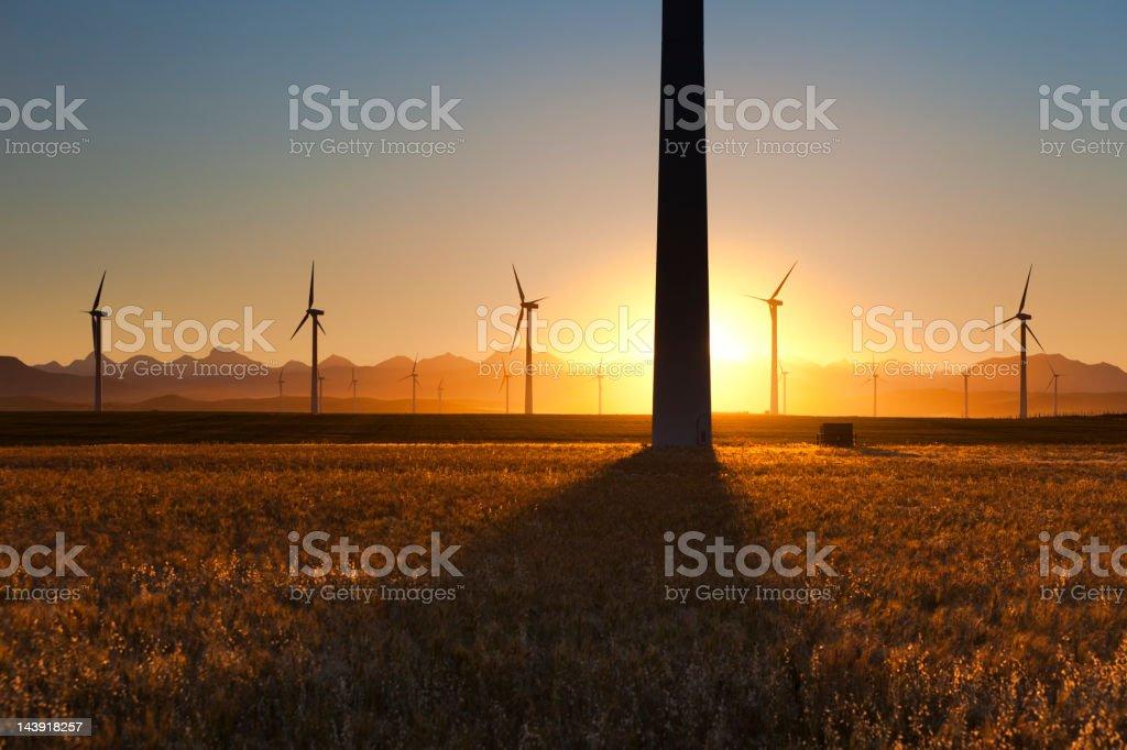 Wind Turbines at Sunset royalty-free stock photo