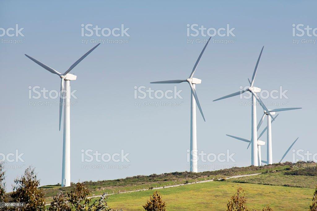 Wind turbines, green meadow and blue sky, alternative energy. stock photo