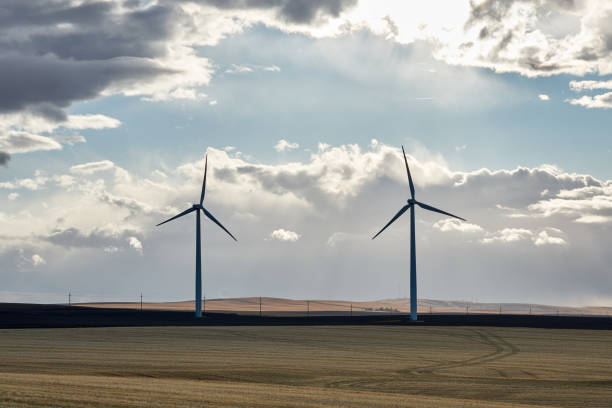 Wind turbines in a field with clouds stock photo