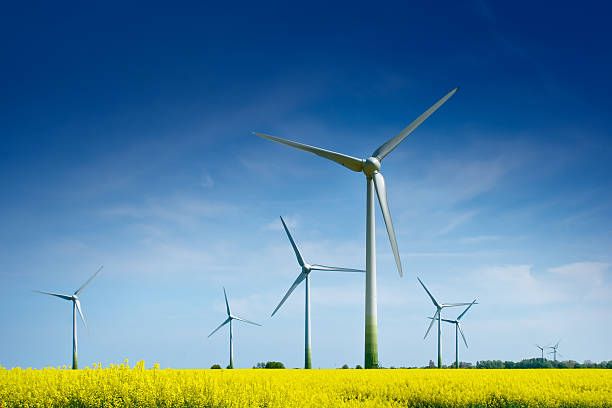 wind turbines in a rape field - windmolen stockfoto's en -beelden