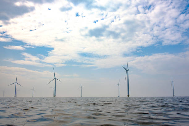 Wind turbines in an offshore windpark during a calm day - foto stock