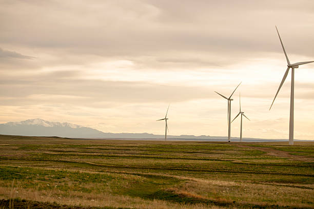 Wind Turbines in Colorado stock photo