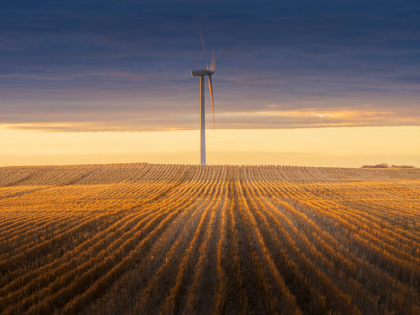 Windkraftanlagen im Sonnenaufgang – Foto