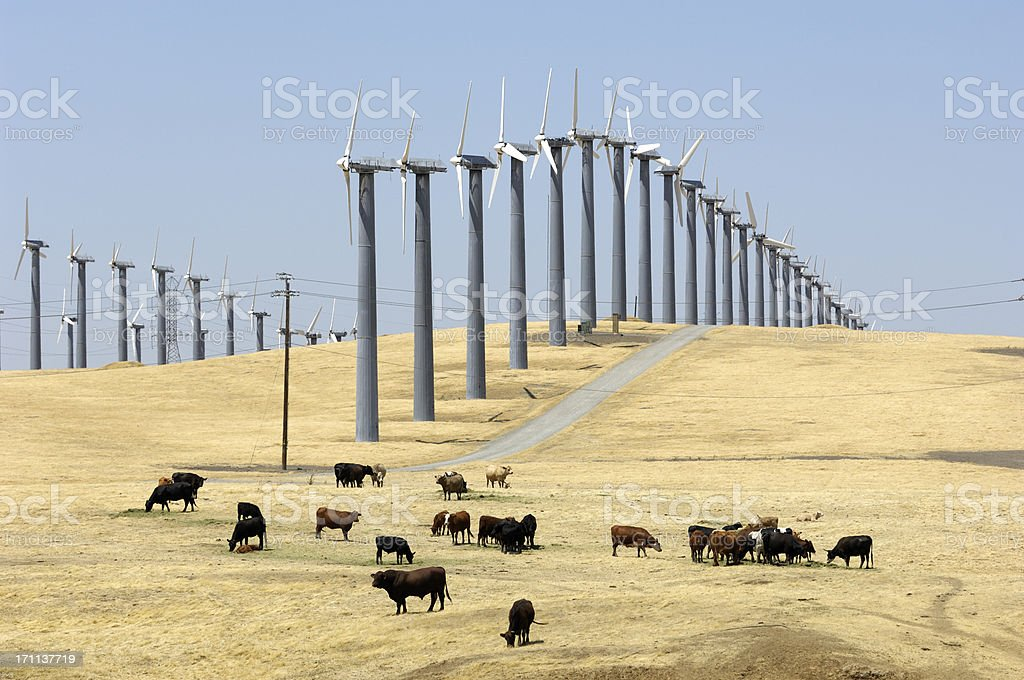 Wind Turbines Lined Up Along Hill royalty-free stock photo