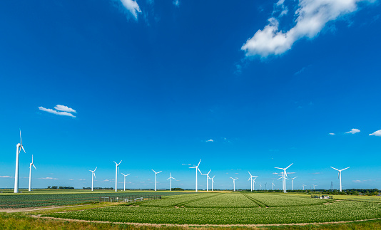 Wind turbines, renewable energy on a green field, spring day. Wind farm in the Netherlands.