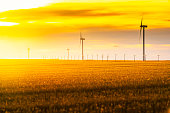 Wind turbines silhouette on sunset, SK, Canada.