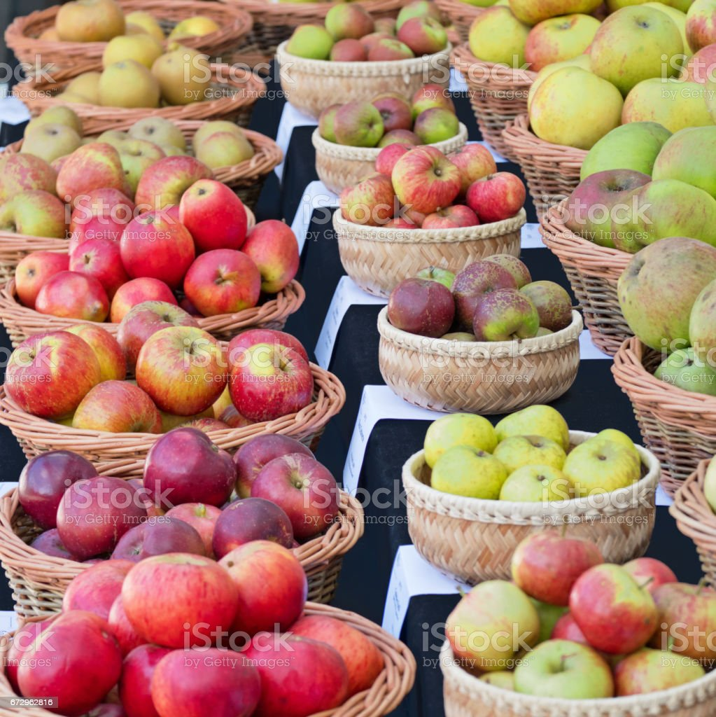 Windfall and picked apples on display in the Autumn stock photo