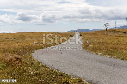 winding autumn road in the yellow box in Montenegro in the Dormitory