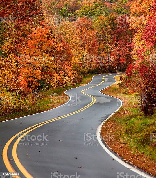 Photo of Winding Country Road in Autumn