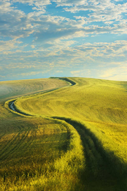 Winding country road in Tuscany stock photo