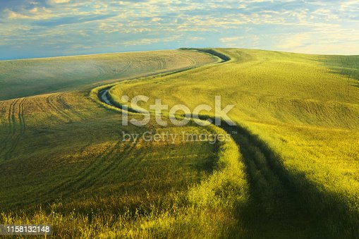 Dirt road in the green field