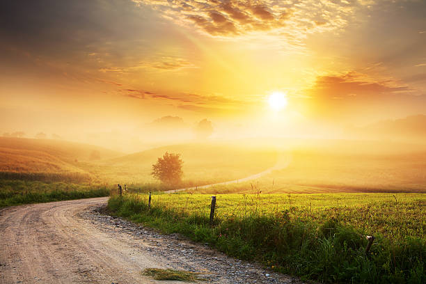 Winding Farm Road through Foggy Landscape Winding Farm Road through Foggy Landscape - fields, meadow, sun during sunrise  sunrise stock pictures, royalty-free photos & images