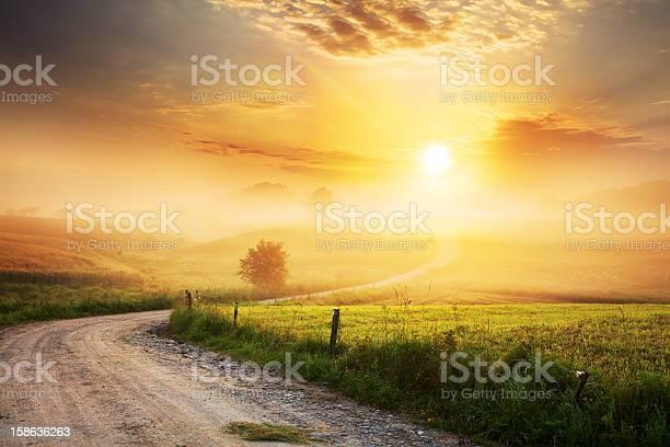 Photo of Winding Farm Road through Foggy Landscape
