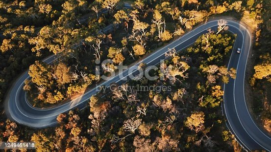 1061550162 istock photo Winding forest road 1249461418