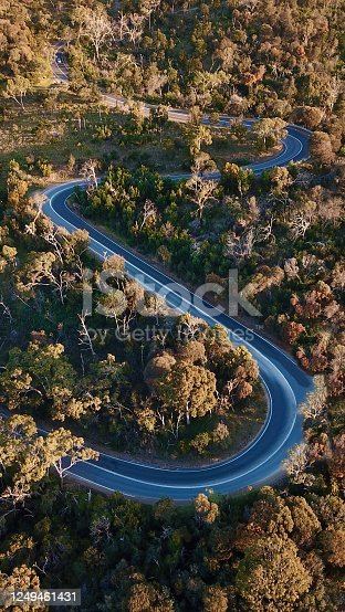 1061550162 istock photo Winding forest road 1249461431