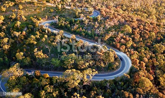 1061550162 istock photo Winding forest road 1249461439