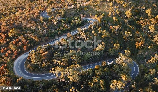 1061550162 istock photo Winding forest road 1249461451