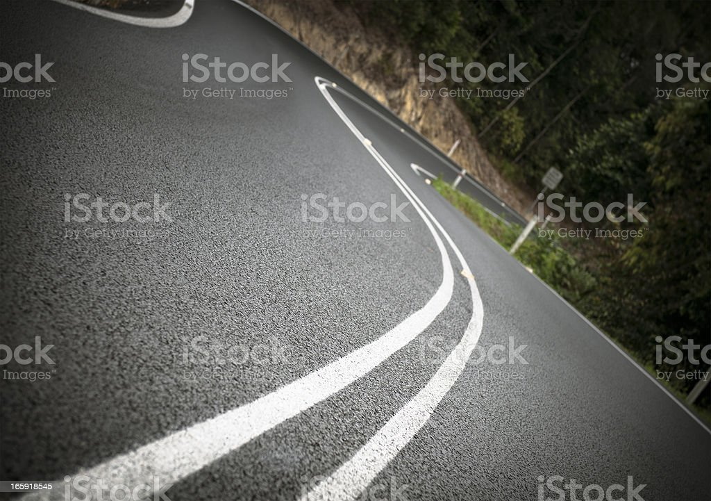 Winding Forest Road royalty-free stock photo