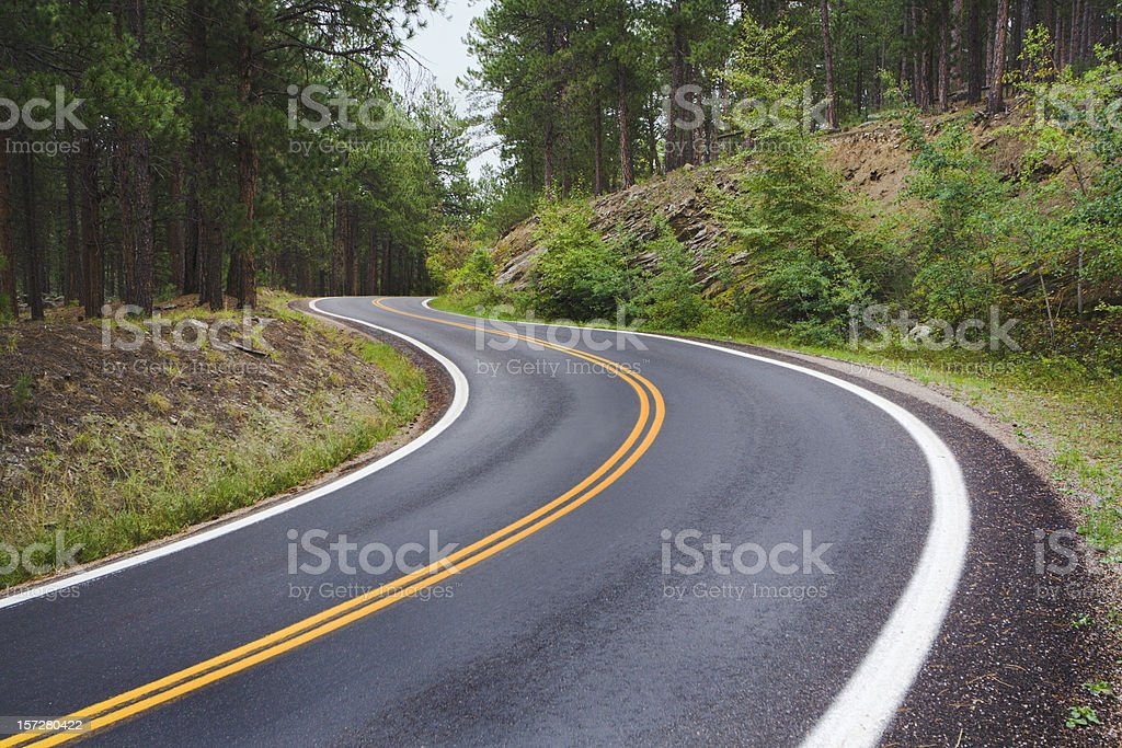 Winding Mountain Road, Curves Along Scenic Black Hills Forest Highway royalty-free stock photo