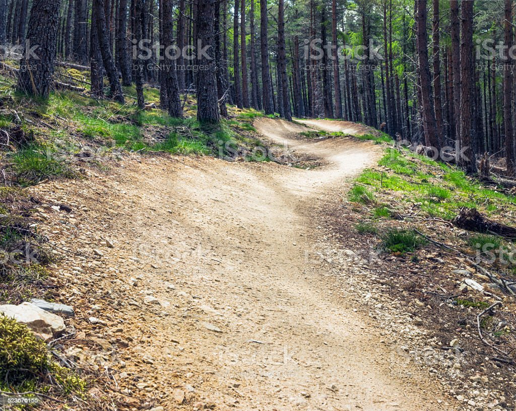 Winding mountainbike track through forest stock photo
