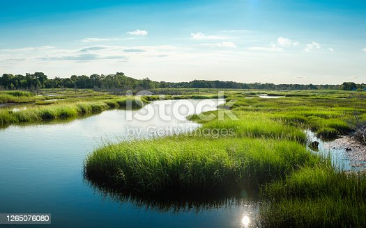 istock Winding River through green marshland. Blue water, cloudy blue sky and reflections of the sun. 1265076080