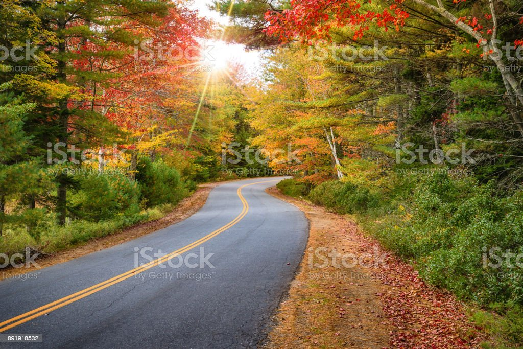 Winding road curves through autumn trees in New England stock photo
