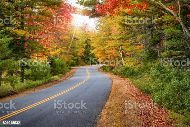 Photo of Winding road curves through autumn trees in New England